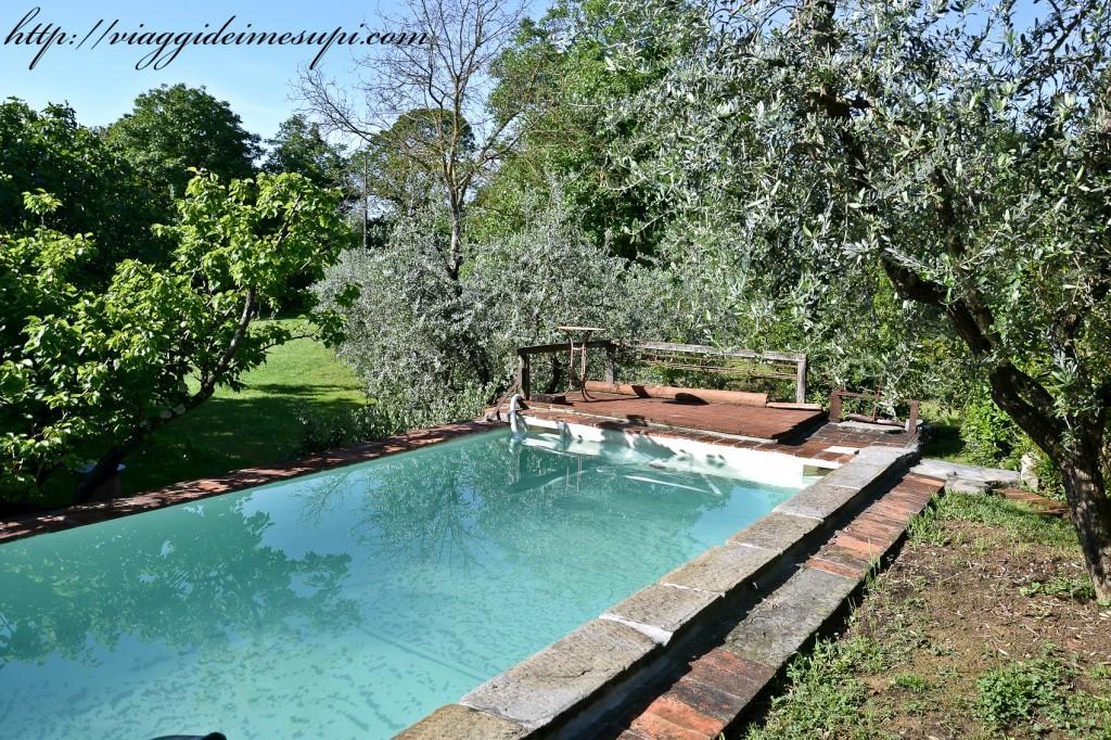 Agriturismo All'Ombra del Tiglio piscina