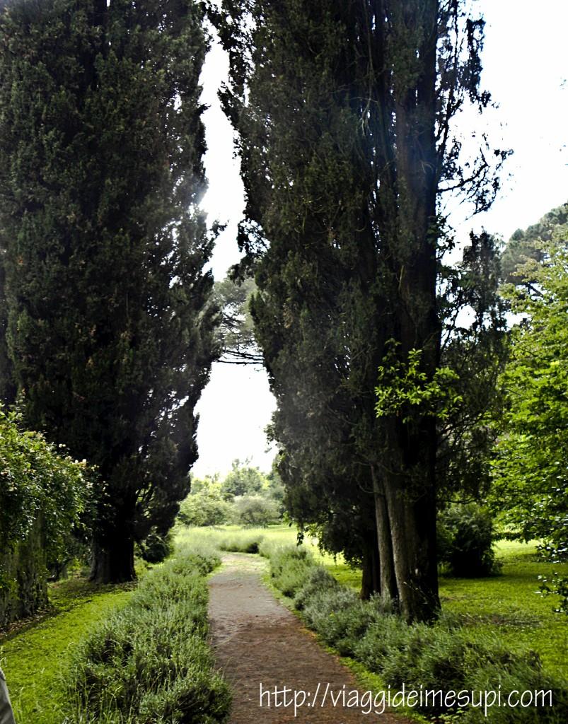 Giardini di Ninfa, viale