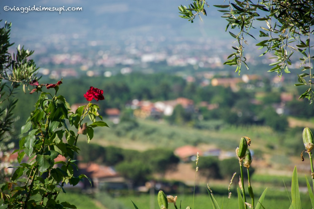Pistoia verde - vista sulla valle
