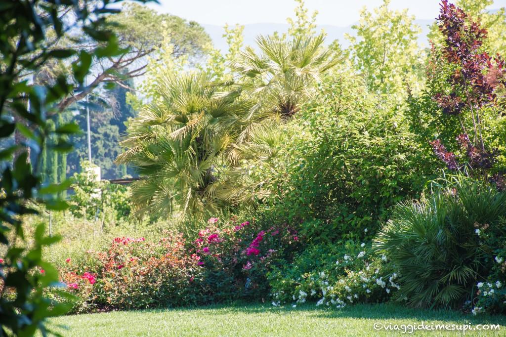 Pistoia - piante mati