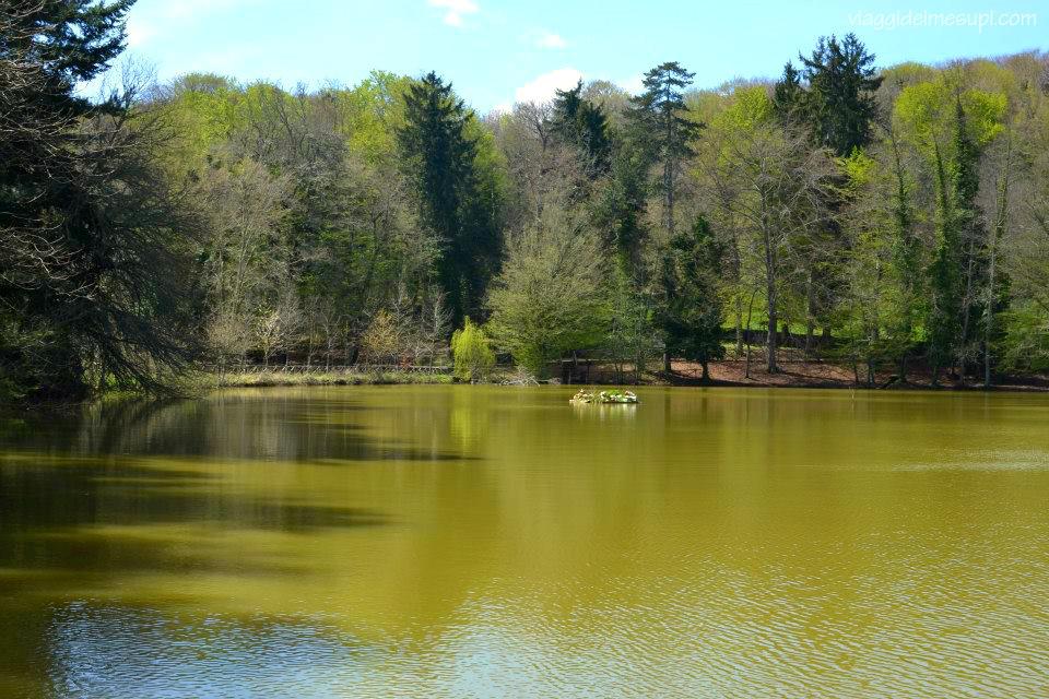 Lago di Cutino d'Umbra nella Foresta Umbra