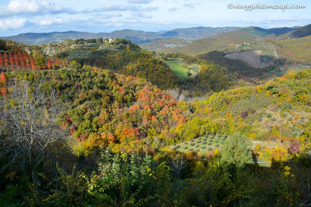 Frantoi Aperti in Umbria